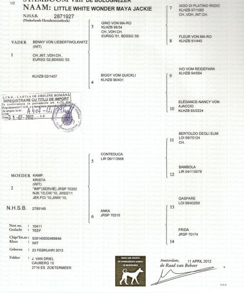 pedigree maya0001
